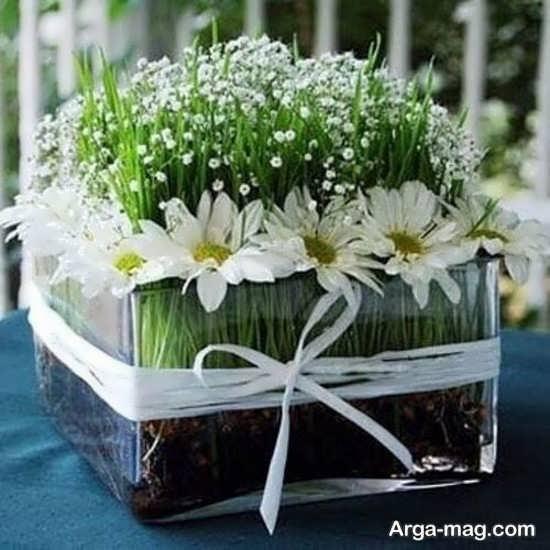 تصاویری از تزیینات سبزه عروس