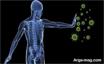 آنتی باکتریال بادرنجبویه