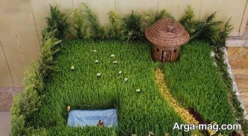 زیباسازی سبزه برای عید نوروز