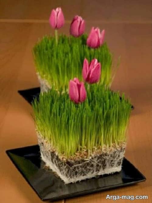 زیباسازی سبزه عید نوروز
