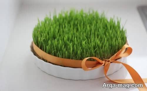 تزیین ساده و جذاب سبزه
