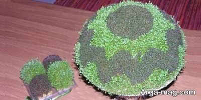 کاشت سبزه دو رنگ