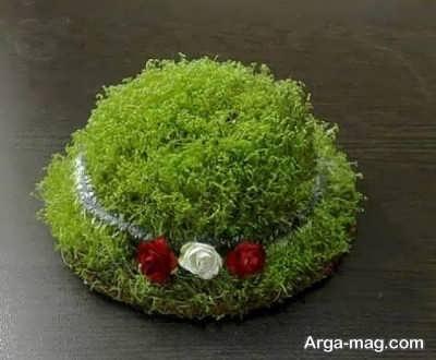 مدل سبزه با خاکشیر