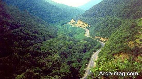 جنگل های دیدنی آذربایجان شرقی