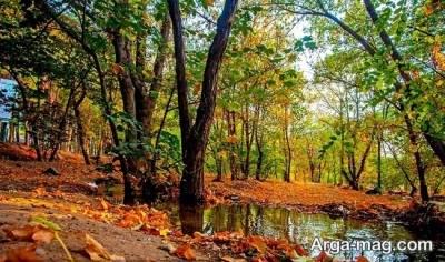 دریاچه و چیتگر