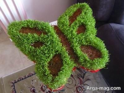 نحوه کاشت سبزه فوری
