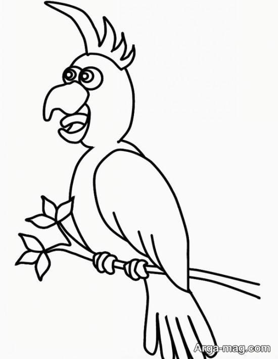 نقاشی طوطی برای کودکان