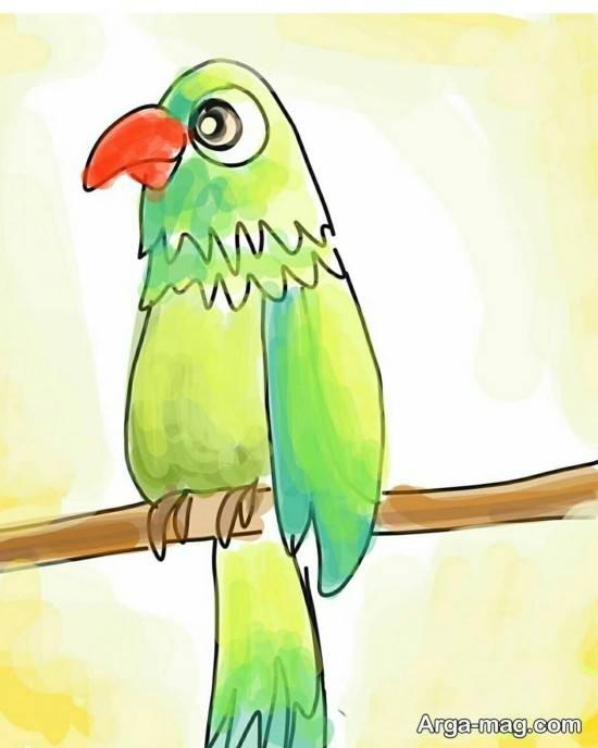 طراحی طوطی با مداد رنگی