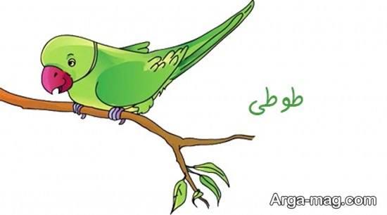 نقاشی جدید طوطی