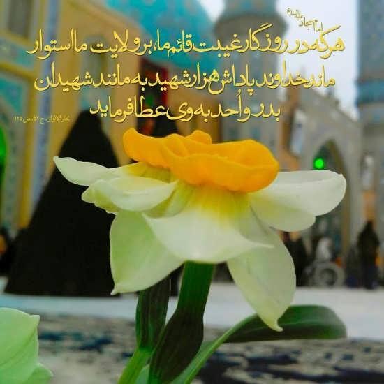 عکس پروفایل امام زمان (عج)