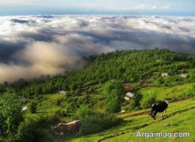 روستای پر جاذبه مازیچال