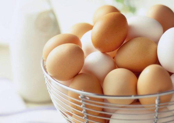 تشخیص تخم مرغ سالم