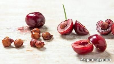 روش اصولی کاشت درخت گیلاس