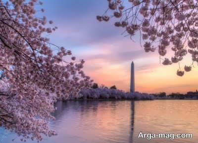متن کوتاه درباره بهار