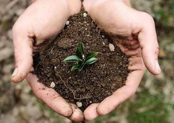 تشکیل خاک