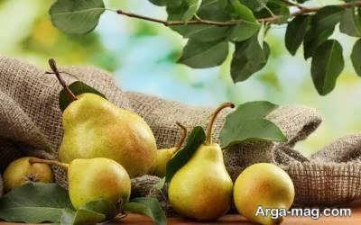 میوه های مفید برای بیماران دیابتی