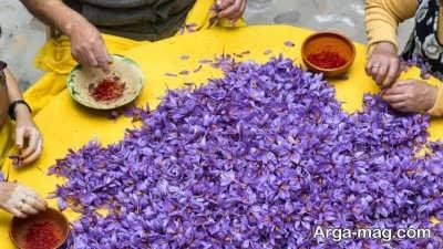 از خواص گلبرگ زعفران و فواید جادویی آن چه میدانید؟