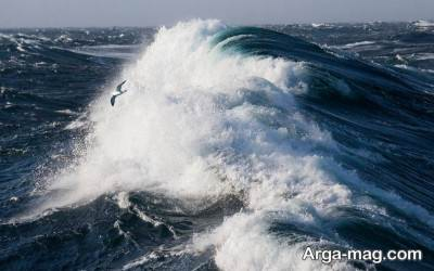 تفاوت مشهود دریا و اقیانوس