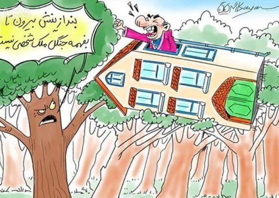 کاریکاتور بامزه نابودی جنگل ها