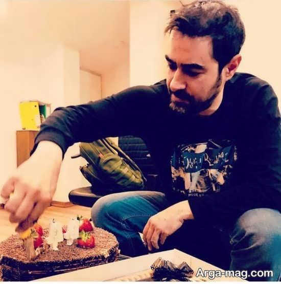 عکس های زیبا شهاب حسینی