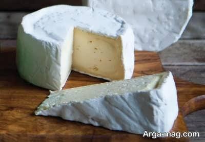 روش تهیه پنیر