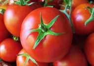 خواص عالی گوجه فرنگی