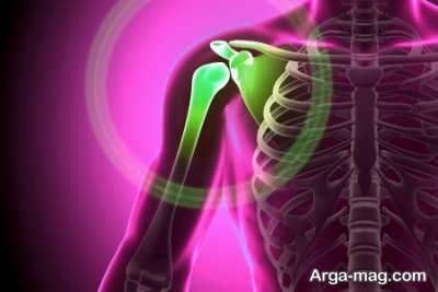 سلامت استخوان ها و فواید درمانی آلو