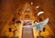 عکس نوشته امام رضا