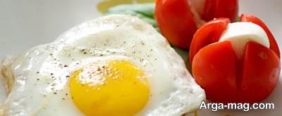 هدف از رژیم تخم مرغ چیست