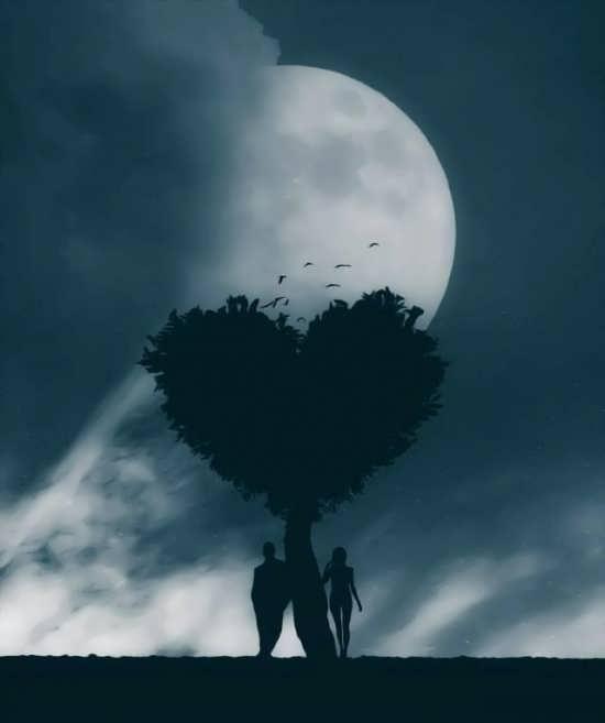 متفاوت ترین تصاویر عاشقانه برای پروفایل