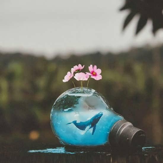 عکس پروفایل با سوژه های زیبا و دوست داشتنی
