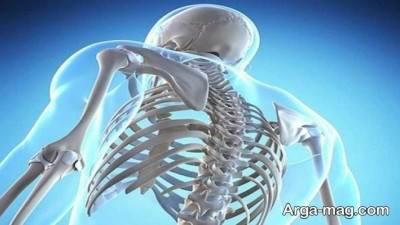 بهبود سلامت استخوان ها