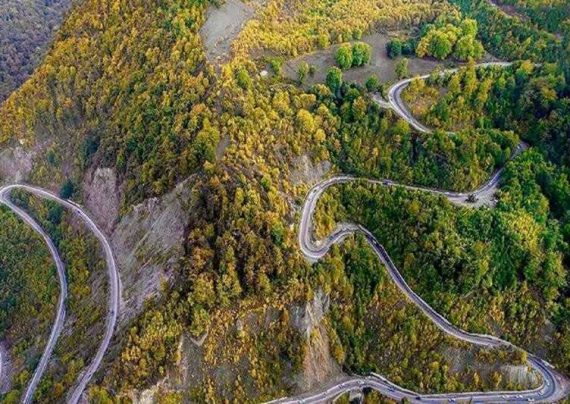 عکس دیدنی از جاده جنگلی مارپیچ