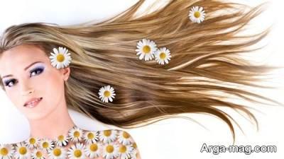 سلامت مو با مصرف خامه