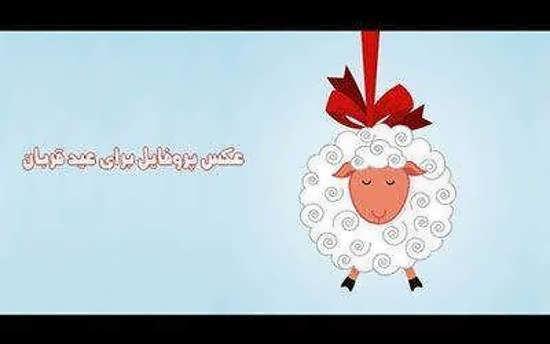 تصویر پروفایل برای عید قربان زیبا و فرخنده