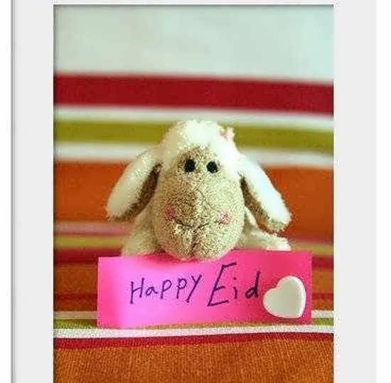 عکس پروفایل برای عید قربان بی نظیر و خاص