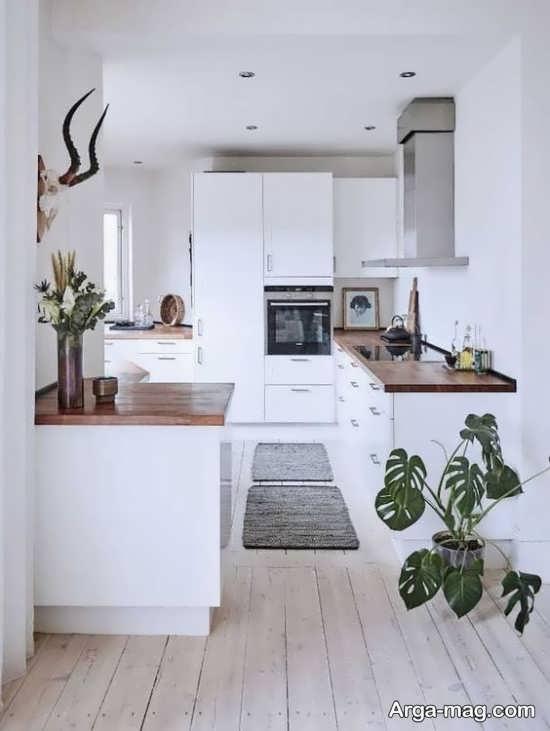 دیزاین خاص آشپزخانه کوچک