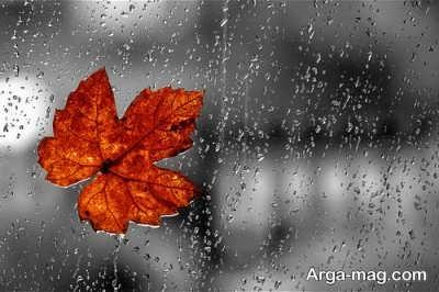 تعبیر مشاهده باران در خواب از دیدگاه 10 تعبیرگر برجسته