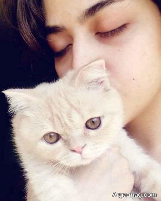 متن ریحانه پارسا برای گربه اش