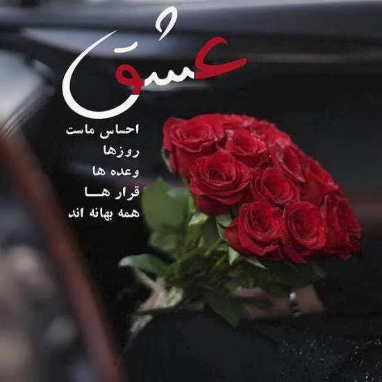 عکس دسته گل زیبا و عاشقانه با تنوعی فراوان