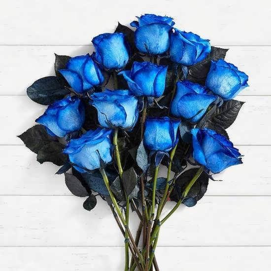 انواع پروفایل های شیک و بی نظیر دسته گل آبی رنگ