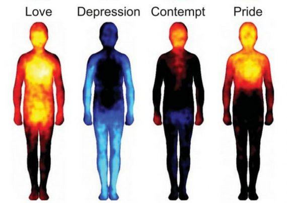 مهم ترین ویژگی های افراد سرد مزاج