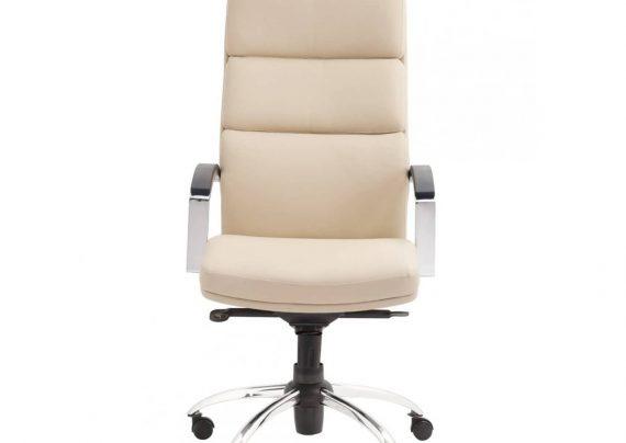 مدل صندلی اداری شیک و باشکوه