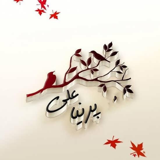 عکس نوشته های جدید از اسم علی و پرنیا