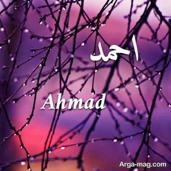 عکس پروفایل اسم احمد با تم زیبا