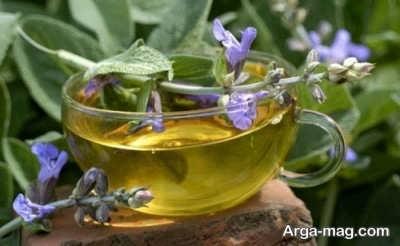 استفاده از چای گل مریمی به منظور درمان تب