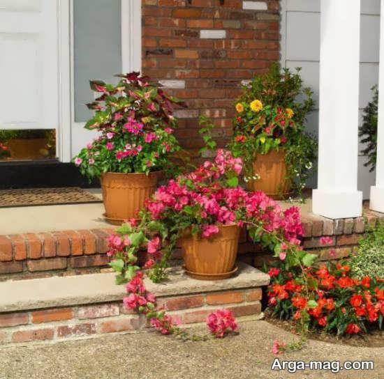 تزیین زیبای حیاط