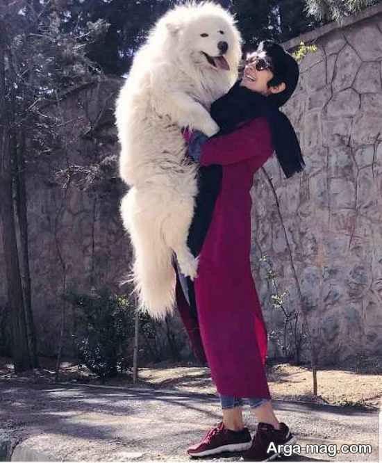 سگ غول پیکر در آغوش مریم معصومی