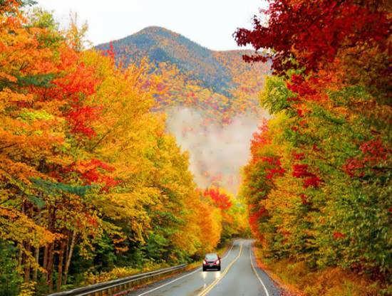 انواع عکس طبیعت پاییزی زیبا و جذاب