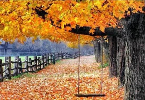 زیباترین و جذاب ترین عکس طبیعت پاییزی